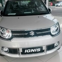 Gallery Suzuki 2 By Ambo