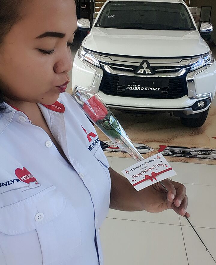 Sales Marketing Mobil Dealer Mitsubishi Denpasar Nita 3