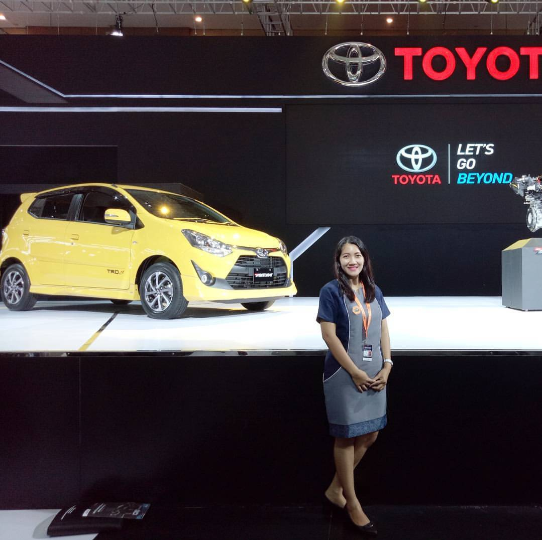 Sales Marketing Mobil Dealer Toyota Aya