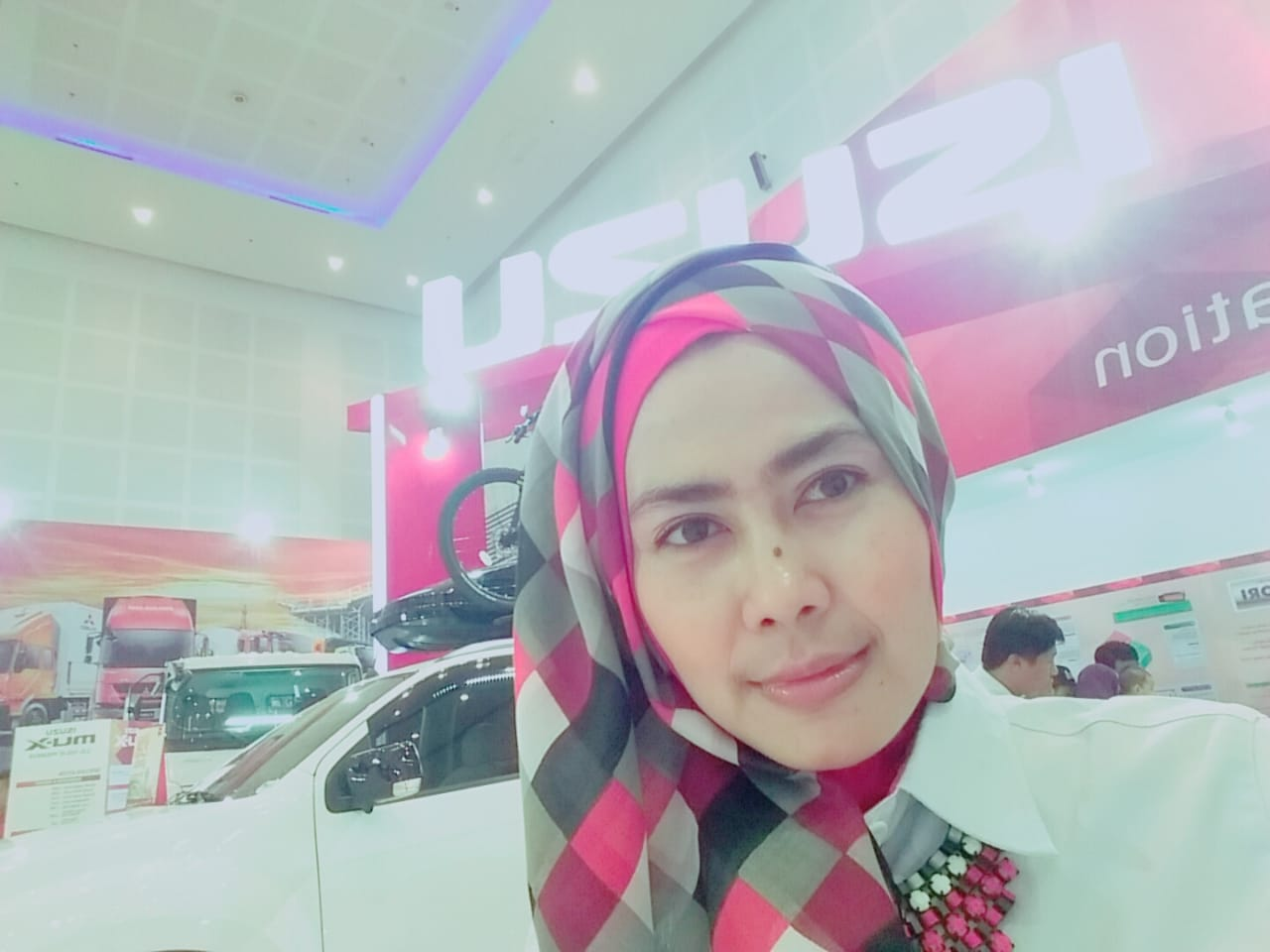 Sales Marketing Mobil Dealer Isuzu Dhewi